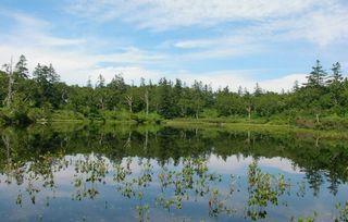 ニセコ神仙沼