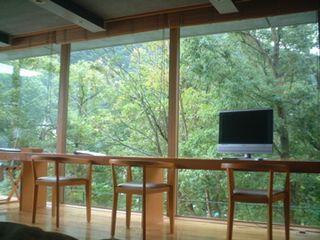 箱根の森 洋室の窓からの風景
